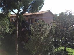 Casa in affitto di 50 mq a €850 (rif. 17/2018)