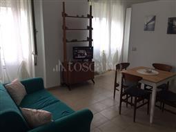 Casa in affitto di 45 mq a €500 (rif. 18/2018)